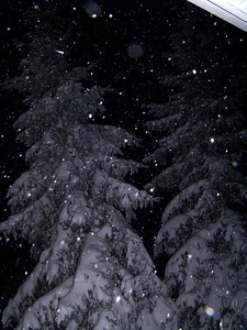 Night Snow!