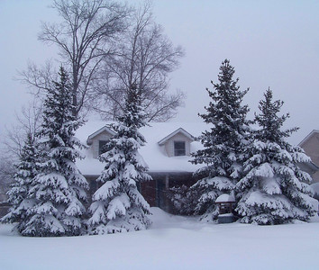 Winterland!