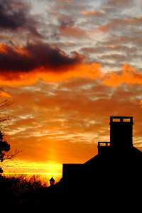 Sunset's Skyward Reach!