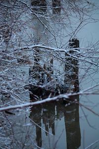 Quiet of Winter!