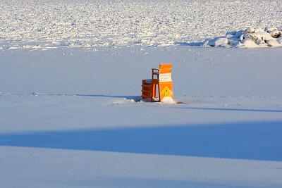 Polar Bears & Penguins Only!