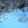 Snowy Blue!