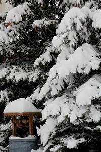 Morning Snow!