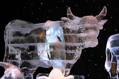 Iced Wonders!