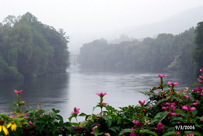 Foggy River View!