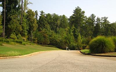 Aaronwood Alpharetta Cherokee County Neighborhood (16)