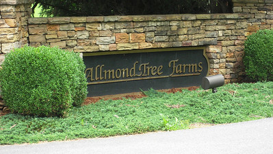 Allmond Tree Farms Alpharetta  (14)