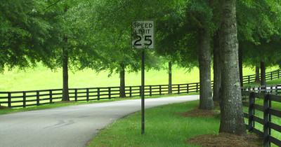 Allmond Tree Farms Alpharetta GA -Cherokee County (2)