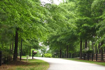Allmond Tree Farms Alpharetta GA -Cherokee County (11)