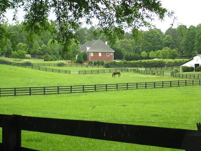 Allmond Tree Farms Alpharetta GA -Cherokee County (1)