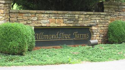 Allmond Tree Farms Alpharetta  (15)