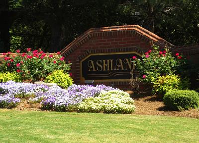 Ashland Johns Creek GA Neighborhood (4)