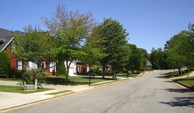 Broadwell Oaks Alpharetta Subdivision (5)