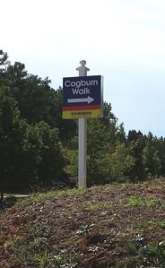 Cogburn Walk Alpharetta GA (15)
