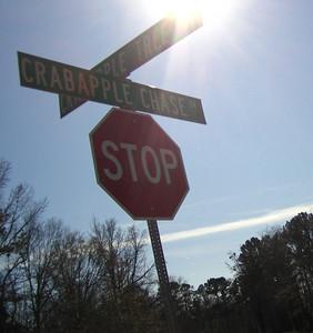Crabapple Chase Alpharetta GA Homes (9)