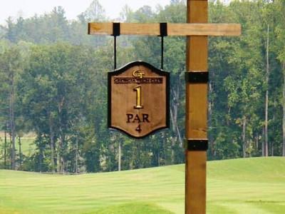 Echelon Alpharetta Estate Community GA-Cherokee County (5)