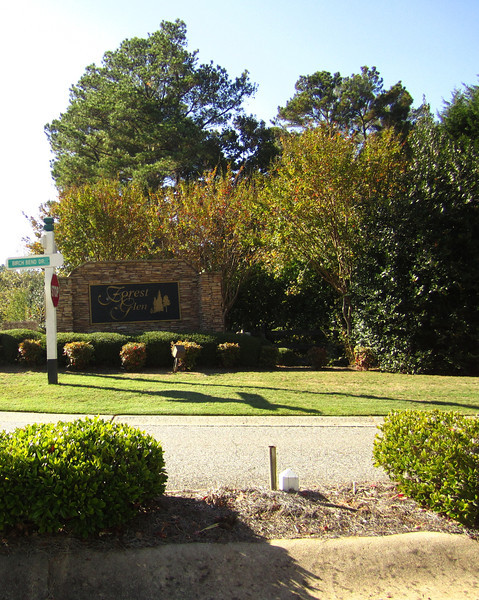 Forest Glen Cumming GA Homes (1)