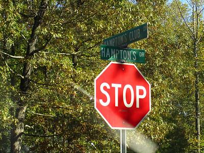 Hamptons Grant Cumming GA (3)