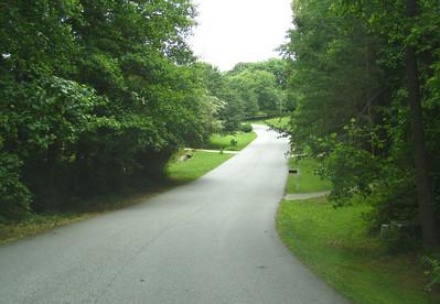 Hopewell Chase Alpharetta Cherokee County Homes (15)