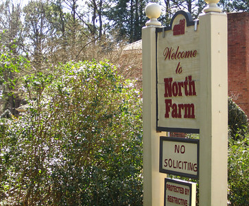 North Farm Alpharetta GA Homes (20)