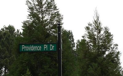 Providence Place Alpharetta Community (1)