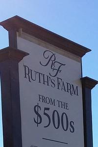 Ruths Farm Alpharetta GA (4)