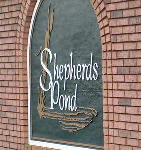 Shepherds Pond Alpharetta Neighborhood (3)