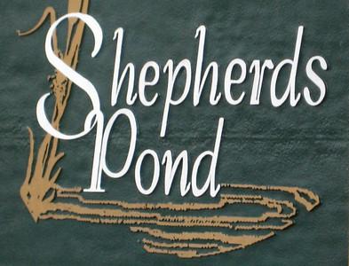 Shepherds Pond Alpharetta Neighborhood (5)
