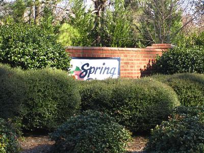 Spring Place Alpharetta GA Community (13)