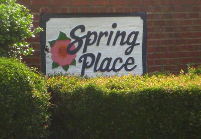 Spring Place Community Alpharetta GA (6)