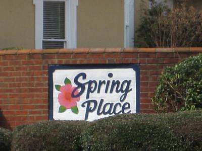 Spring Place Community Alpharetta GA (3)
