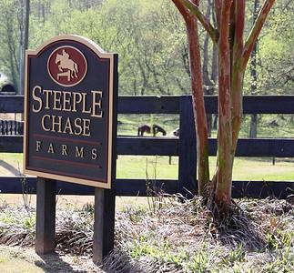Steeple Chase Alpharetta Georgia (3)
