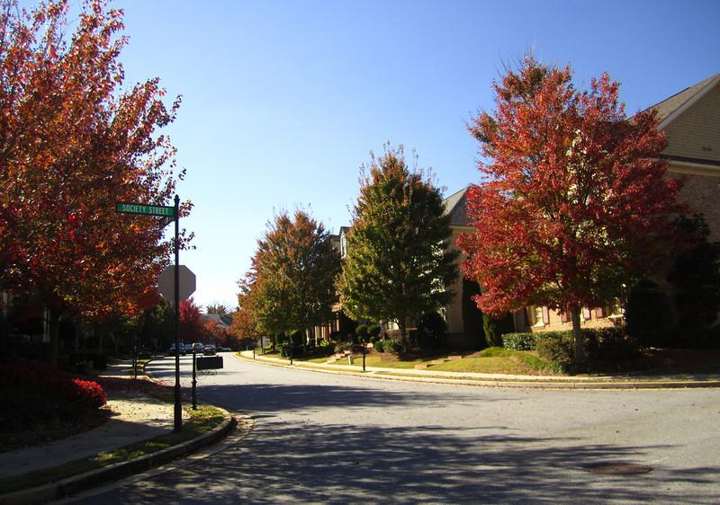 The Palisades At Milton Park Alpharetta GA (33)
