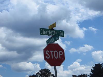 The Preserve On Charlotte Drive Alpharetta (21)