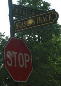 The Seasons At Creekside-Alpharetta (2)