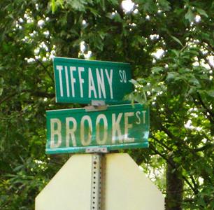 Tiffany Square Alpharetta GA Neighborhood (1)