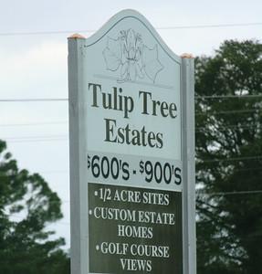Milton Georgia Tulip Tree Estates (2)