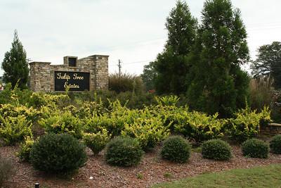Milton Georgia Tulip Tree Estates (5)