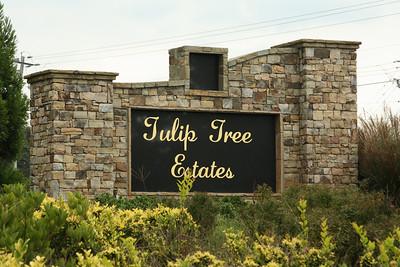 Milton Georgia Tulip Tree Estates (6)