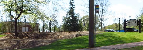 Voysey Alpharetta GA Neighborhood  (22)