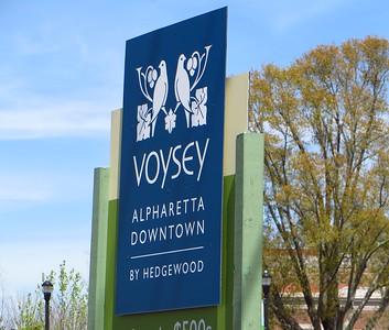 Voysey Alpharetta GA Neighborhood  (18)