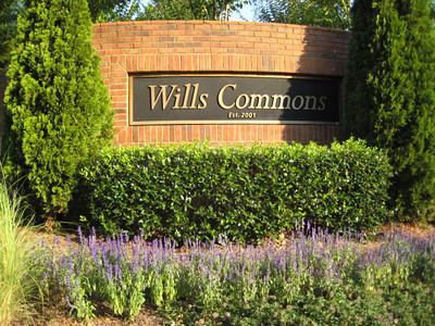 Wills Commons Alpharetta Community (5)