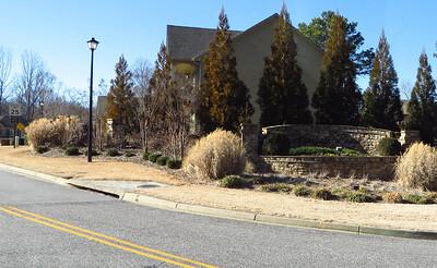 Wyngate Point Alpharetta GA Home (2)
