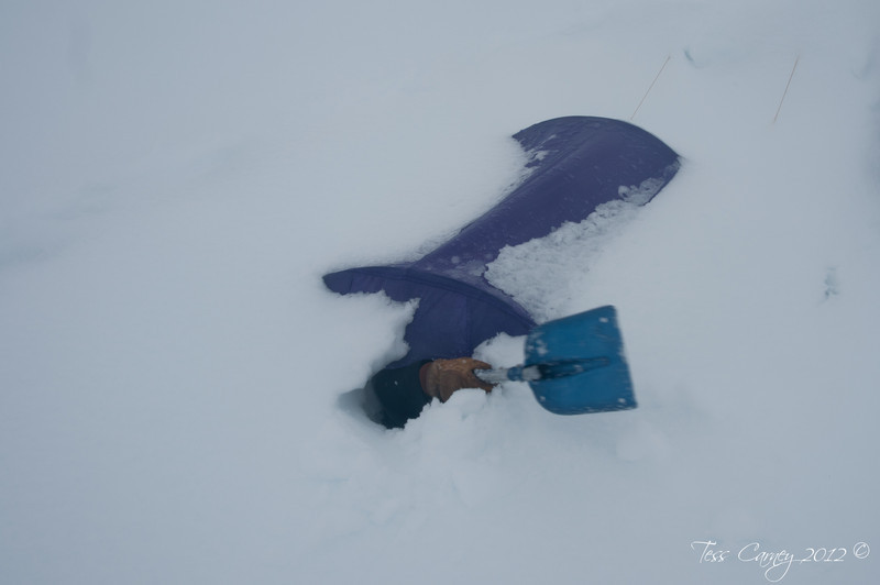 The only way to dig oneself out of a meter and half snow storm.
