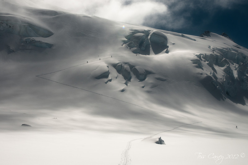 Splitboarding in the Garden of Eden, New Zealand   Photo: Tess Carney
