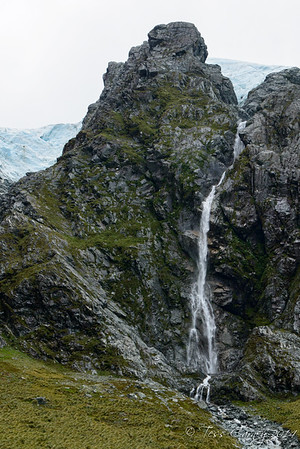 Pretty waterfall with Mt cook Lilies growing on the sides and the Mt Ariki ice fall above