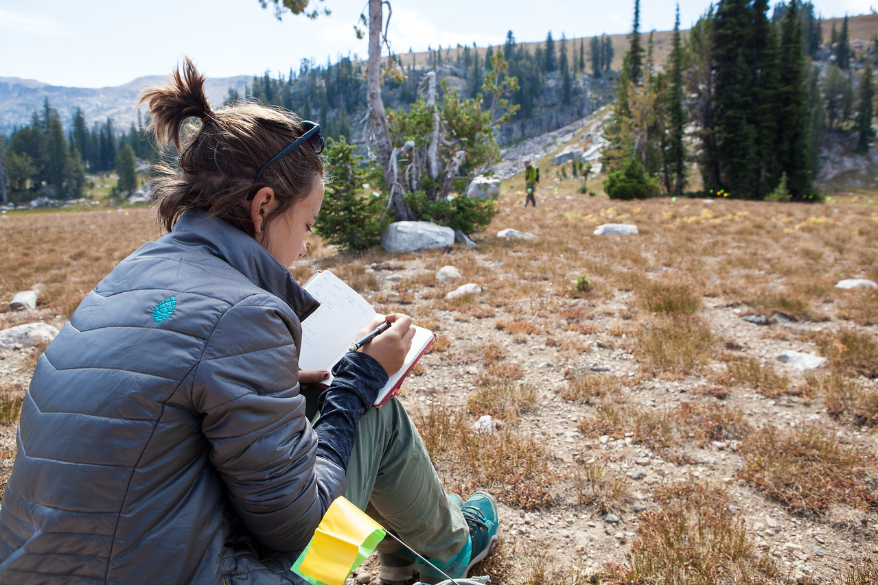 A researcher takes notes while recording a 6,000 year old campsite