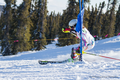 Cobined Ski - Team Greenland - Asta Barslund
