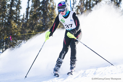 Combined Ski - Team Team Alaska - Alec Stepovich