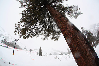 2013 Nature Valley U.S. Alpine Championships - Squaw Valley, CA